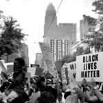 BLM signs